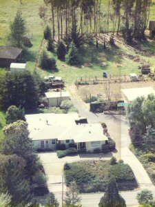 Aerial view of the farm - July, 1999